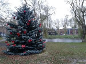 Weihnachtsbaum_Grosssoll_Petersburg